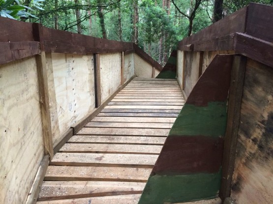 Paintball Bridge Forest