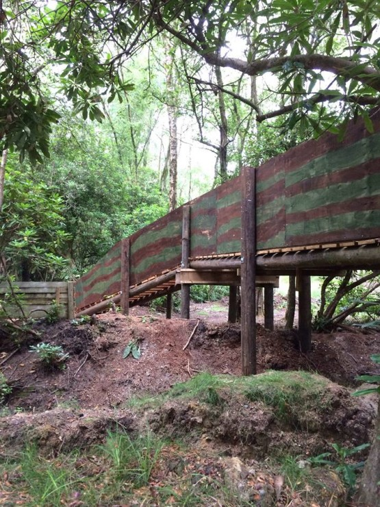 Paintball Bridge in the Forest