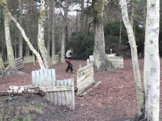 Paintball Forest Barriers